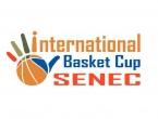 IBC Senec - logo